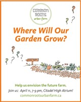 Common Roots Urban Farm: Where Will Our Garden Grow?